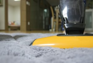 carpet cleaning ipswich